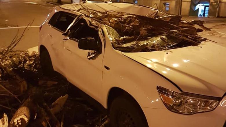 masina copac cazut Oradea