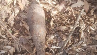 2 Bombă artilerie - Prisaca