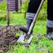 gradinar-ferma-agricultura-munca-tara-shutterstock_588979808