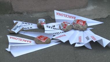 avioane hartie protest2