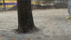 parc ciment