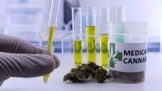 canabis-medical-marijuana-shutterstock_765940930