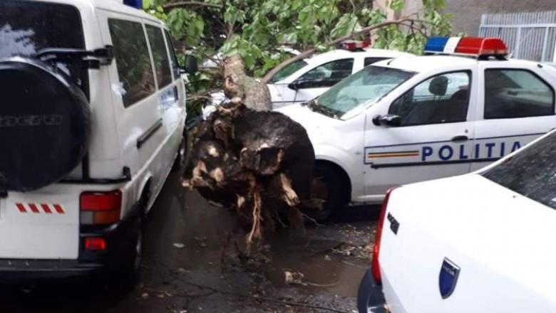 masini-politie-furtuna-braila-obiectivbr.ro