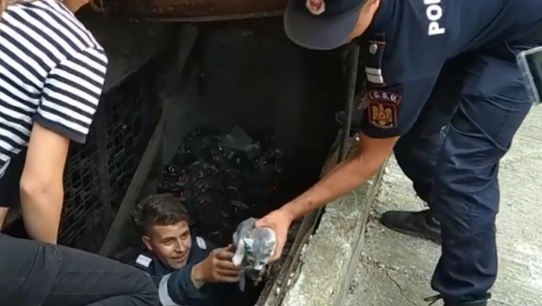 pisica salvata de pompieri