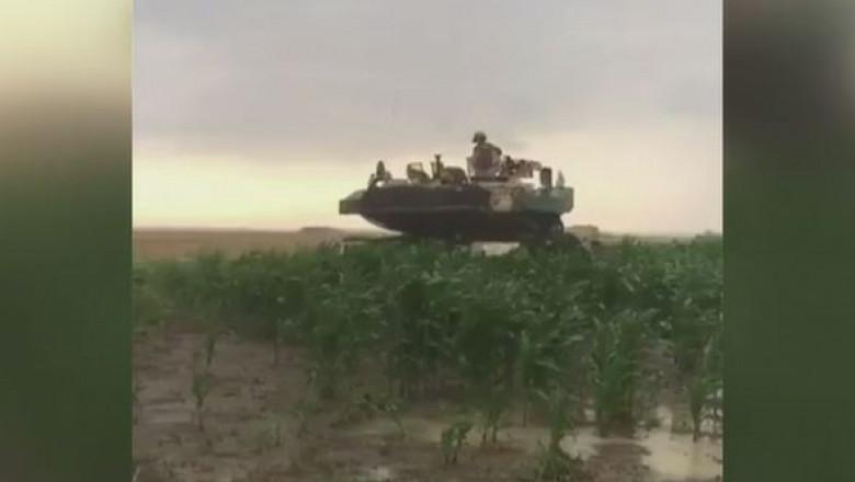 tancuri il