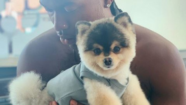 daniel-sturridge-dog-instagram