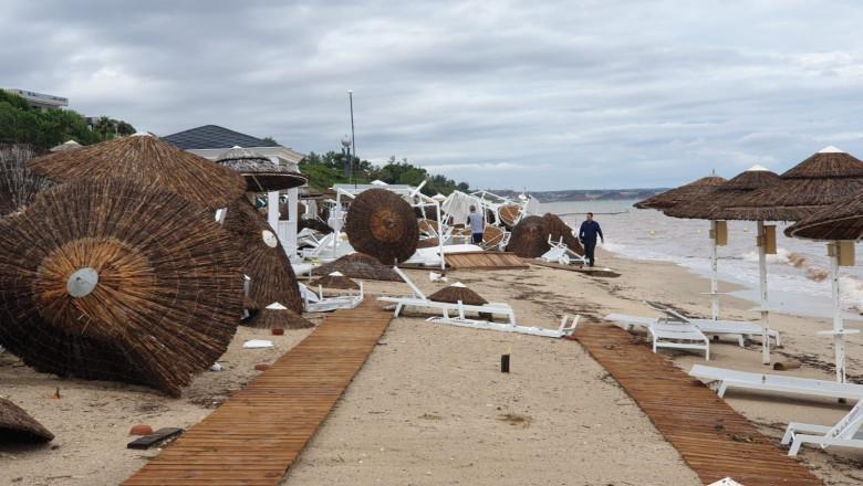 furtuna Grecia copac rusi nou 110719 (15)