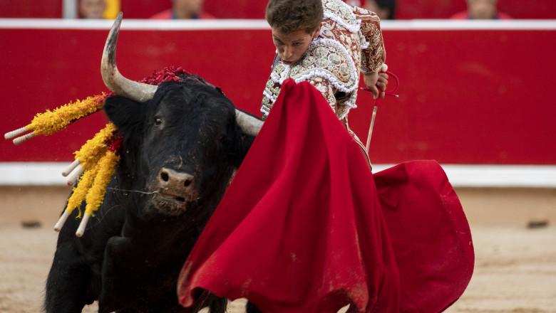 Day 2 - San Fermin Running of the Bulls 2019
