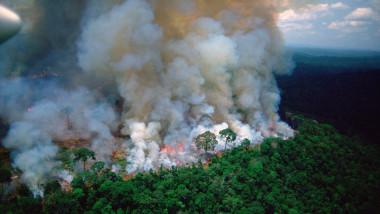 incendiu-padure-amazon