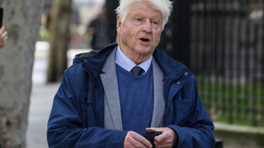 stanley johnson crop - profimedia