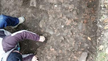 sapaturi-arheologice-timis