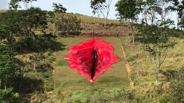Sculptură vagin Brazilia
