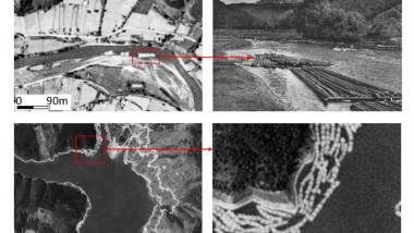 Istoria pădurilor din România, recreată cu ajutorul sateliților care spionau bombele atomice ale URSS