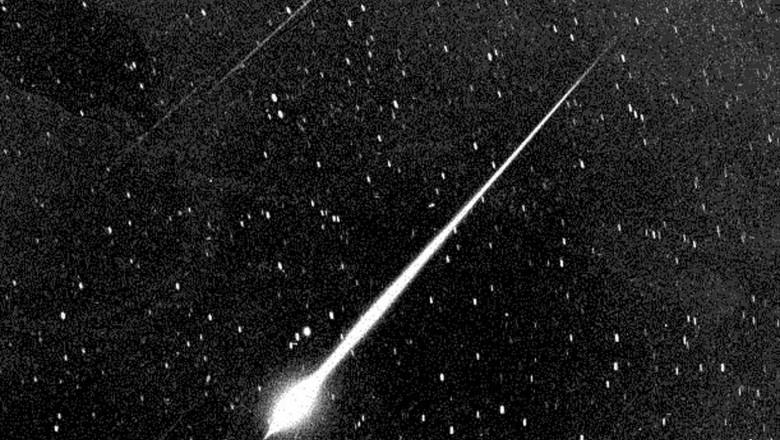 fotografie de stele cu varicoză