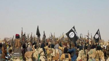 Militanţi jihadişti, luptători ISIS în Niger