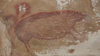 pictura rupestra porc mistret
