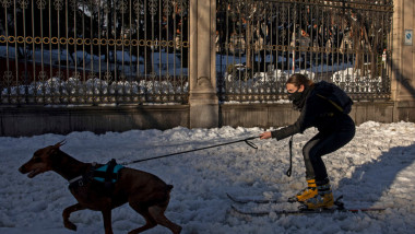 Madrid Digs Out From Exceptional Snowfall