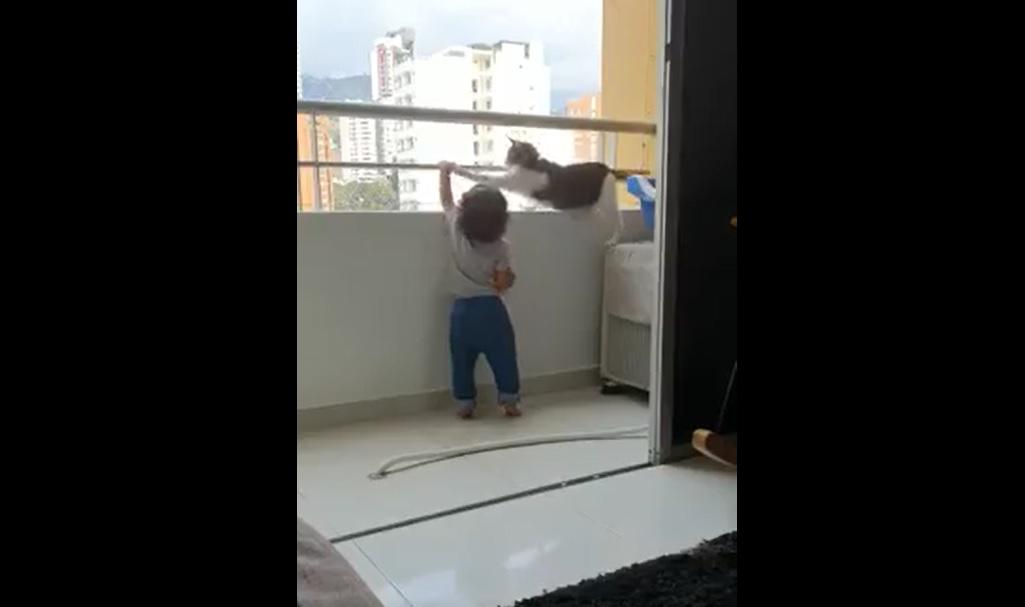 Video viral. O pisică îndepărtează un bebeluș de balustrada unui balcon