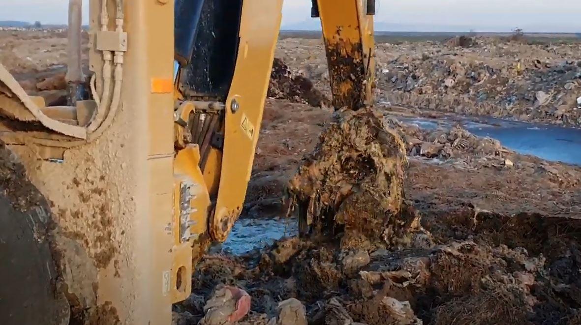 Mirosul greu de suportat de braileni, identificat de Garda de Mediu: Cantitati masive de deseuri de origine animala pe un teren viran