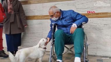 O cățelușă a așteptat zile întregi în fața unui spital în care stăpânul lui era internat