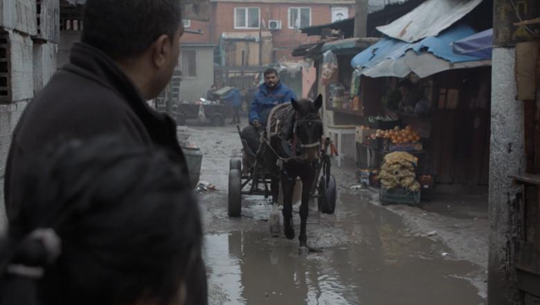 comunitati-romi