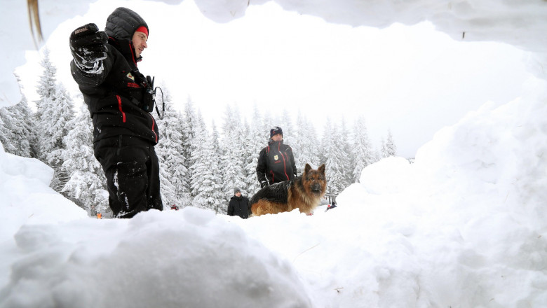 Rescuer from the Mountain Rescue Service at Bulgarian Red Cross and his dog are participating in a training for saving people in an avalanche.