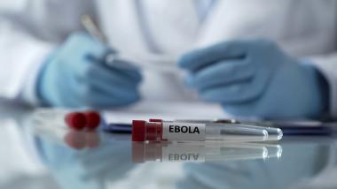 ebola in guineea
