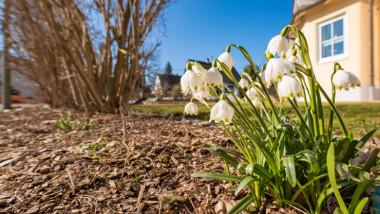 prognoza meteo pentru urmatoarele 4 saptamani si martie
