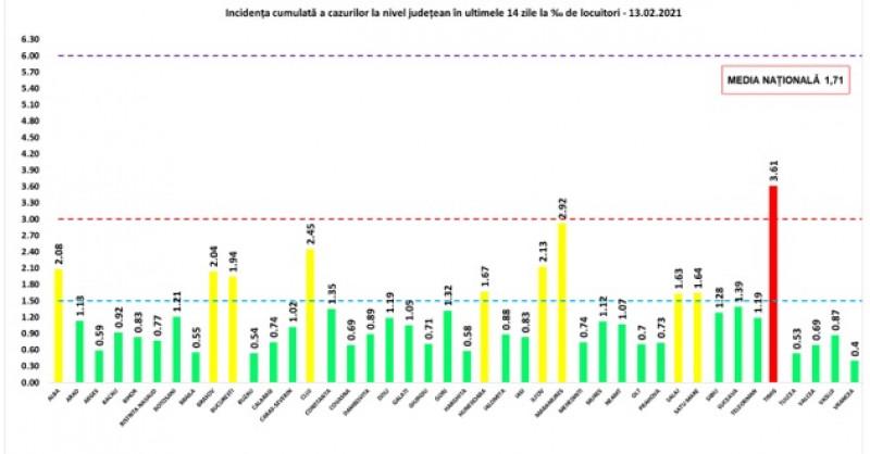 grafic coronavirus 13.02