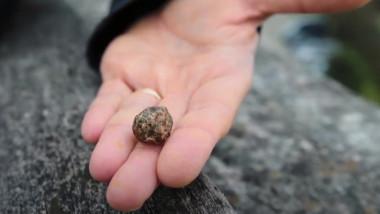 meteorit vechi sistem solar
