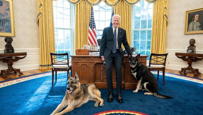 Joe Biden și câinii săi