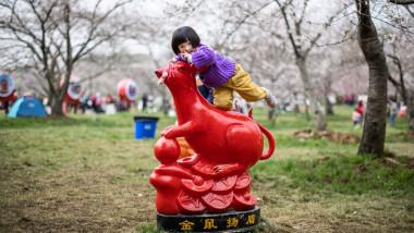 Scade numărul copiilor născuți în China