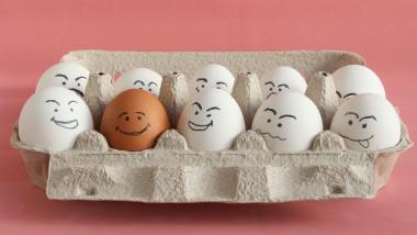 ouă manipulare consum