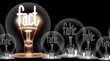 Light Bulbs with Fake and Fact Concept