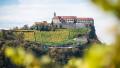 castelul riegersburg recenzii negative romani
