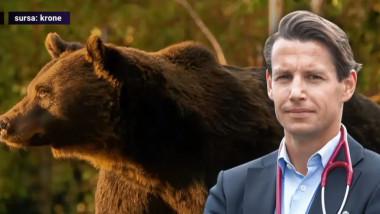 print austriac reactie ursul arthur