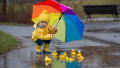 Cod galben de ploi în 14 județe