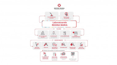 Laboratoarele Regina Maria infografic