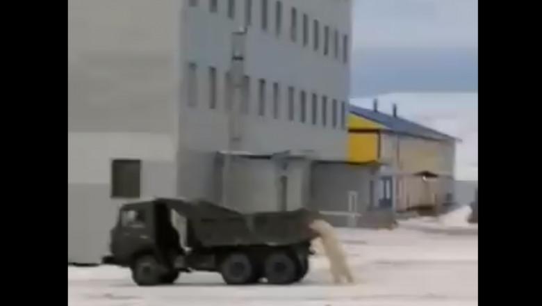 urs polar masina de gunoi