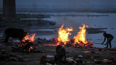 Morții de COVID aruncați în Gange