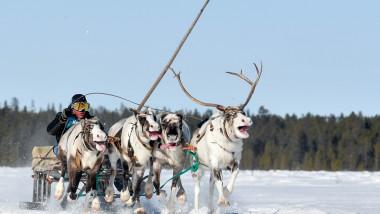 Arctica rusească se topește de 2,5 ori mai repede