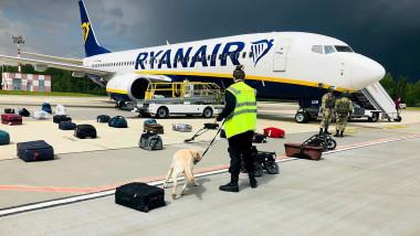 bagaje insirate pe pista langa un avion ryanair si un caine care le miroase