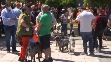 protest-grecia-animale