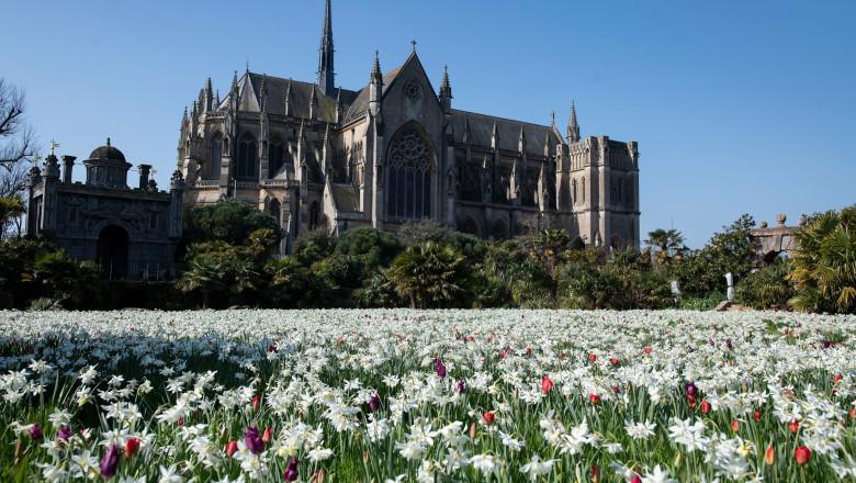 castelul arundel, anglia, înconjurat de flori colorate