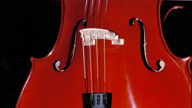 Persoana care cântă la violoncel