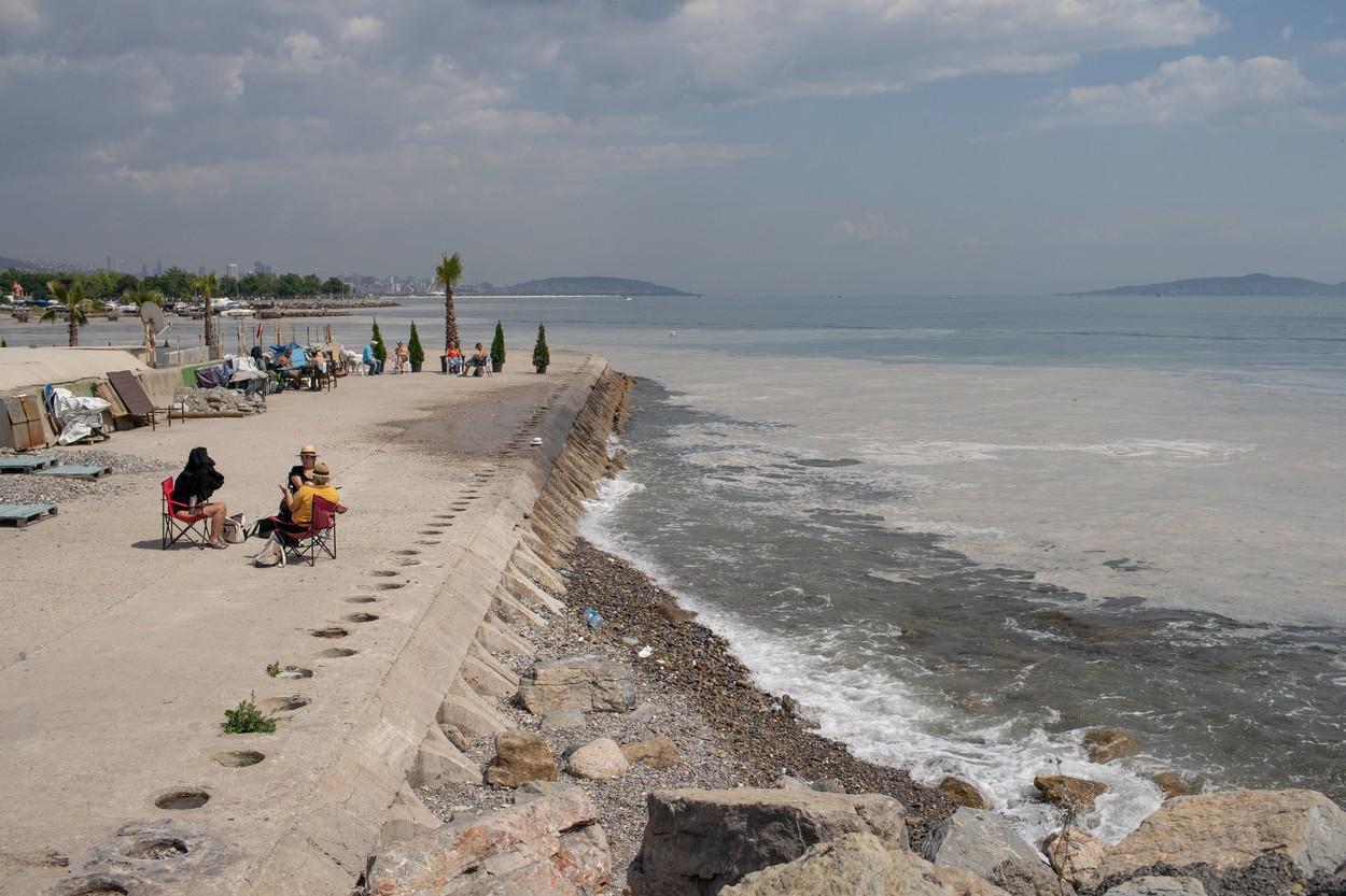 Massive marine mucilage Marmara Sea, Turkey