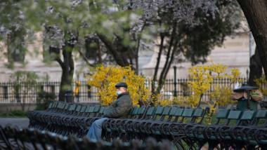 Persoană stă pe o bancă în parcul Cişmigiu.