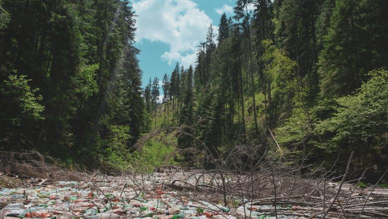 gunoaie-lacul-belis-romsilva1