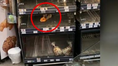 sobolani supermarket Sectorul 1