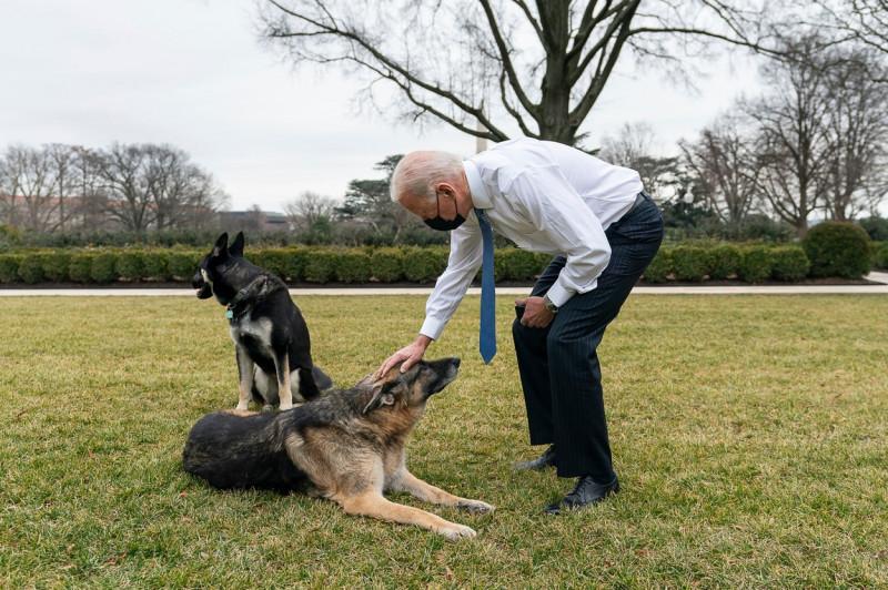 U.S President Joe Biden with First Pets
